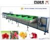 Fruit Grading Machine(FS-DZS)
