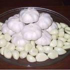 frozen pure garlic white