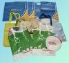 Recyclable tyvek bag
