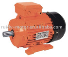 MS Aluminum Induction Motor