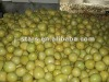 Chinese Fresh Green Fruit