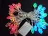 LED color grapes set of spend Christmas lights