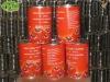 4.5kg TianYuan tomato paste