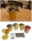 Biodegradable Plant Pot,Flower garden with seeds and grow medium(904004)
