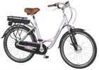Electric bike 5003