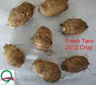 2012 new fresh shandong taro