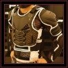 Motorcycle protection body armor jacket