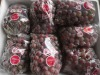 Seedless Red Globe Grape