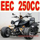 EEC 250cc 3 Wheel ATV