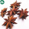 Organic Herb Star Anise Fruit