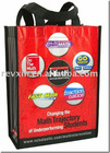 Colorful Non-woven Shopping Bag