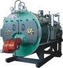 WNS Gas-fired Steam Boiler