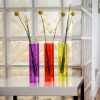 Colorful Acryllic Vase