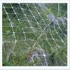 galvanized sns protecting mesh