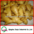 2012 new crop ginger,china dry ginger,market prices for ginger,fresh ginger