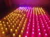 LED beads lights