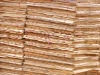 Eucalyptus core veneer from China---GH8048