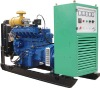 CE approved gas/natural gas generator