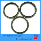 Dust wiper seals