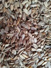 Confectionery Sunflower Seed Kernels -NEW CROP of 2012
