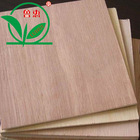 linyi bintangor poplar plywood for furniture