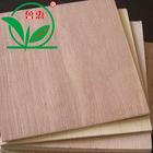 linyi bintangor poplar plywood for furniture