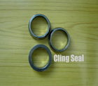 Automobile Exhaust Pipe Graphite O-Ring Gasket