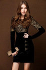 2012 autumn fashion lace show thin dress for lady