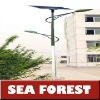 (Hot) Solar Street Light 220w 6 hours 5 wet days 2 lights