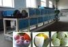 EPE fruit foam net machine