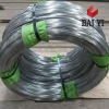 electro galvanized wire (hot sales)