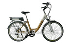 250W Crank Motor Electric Bike with Shimano 7 Speeds