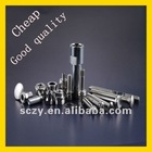 2012 TOP SALE Screws And Fasteners For Promotion Use