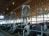 cow fan -roof fan