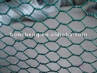 PVC Coated Chain Link Steel Fencing