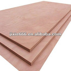 china linyi plywood board