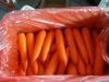 fresh middle carrot 200-250g