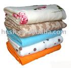 Blanket (SDC11091)