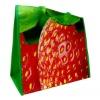 PP Laminated Promo Non woven Shopping Bag