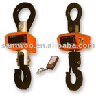 30t digital crane hook