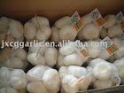 2011 pure white garlic