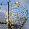 Barbed Razor Wire Fencing (Manufacturer / Factory)
