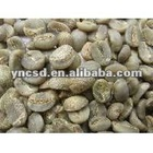 Yunnan arabica green coffee bean