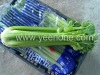 1kg/pc Fresh Chinese big Celery
