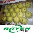 New Crop Golden Pear