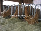 Cattle livestock headlock cattle feed trough IN-M212