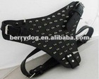 series of spikes for dog collars accessories leather accessories