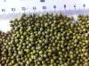 Mung beans , China origin