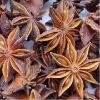 Organic Star Anise Fruit