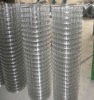 (Factory Price!) Welded wire mesh